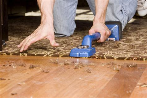 Carpet vs. Hardwood Flooring: The Great Showdown