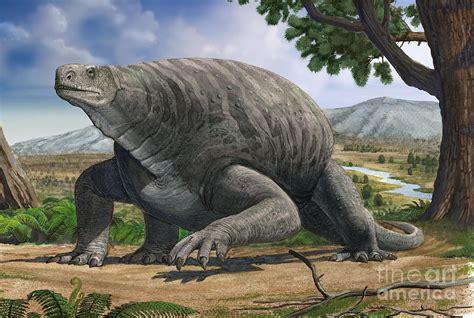 Medieval Dragon Home Decor cotylorhynchus bransoni a prehistoric digital art by