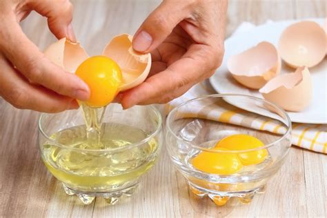 can dogs eat egg shells can dogs eat eggs how to prepare eggs for your