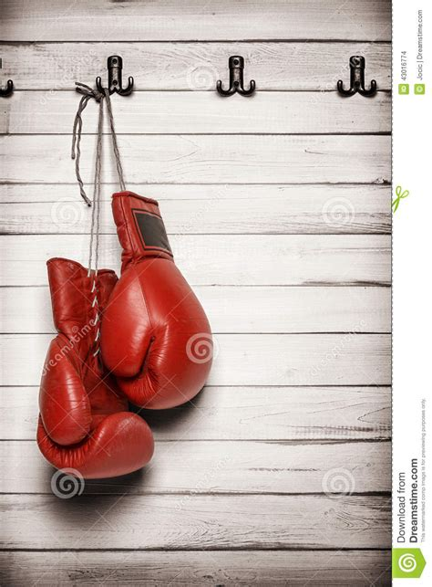 boxing gloves hanging  wooden wall stock photo image