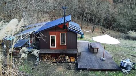 family gives up city to live in a cabin in the