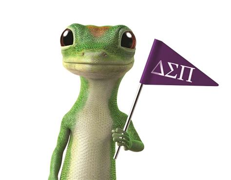geico insurance gecko geico careers and internships for deltasigs