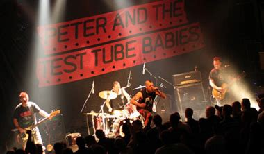 stackridge the official band website peter and the test tube babies the official band website