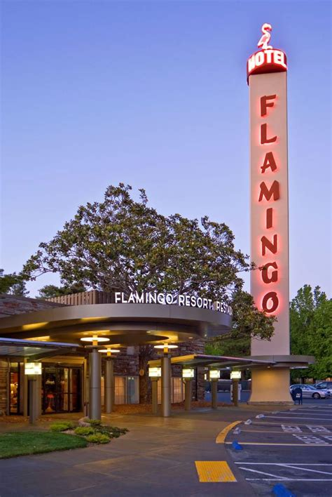 friendly hotels santa 6 family friendly hotels in sonoma county