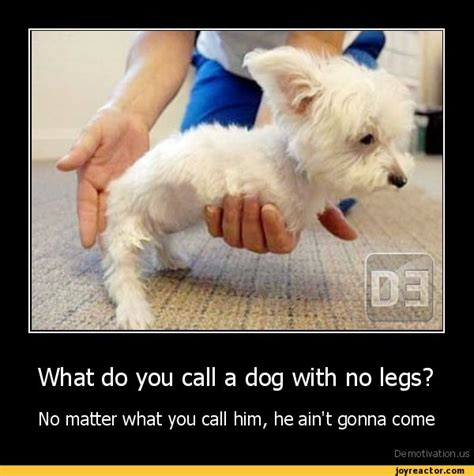 what do you call a with no legs what do you call a with no legs no matter what you call him he ain t gonna comede
