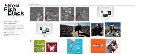 design portfolio maker software package design portfolio pdf download blueskyprogram
