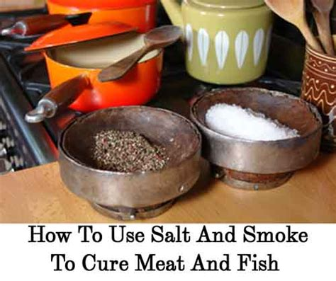how to use a salt l how to use salt and smoke to cure meat and fish lil moo