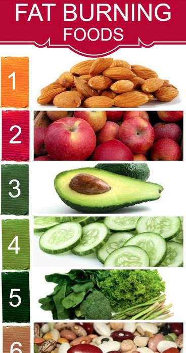 Burning Foods by Top 10 Foods That Burn Belly The Doctor Losing