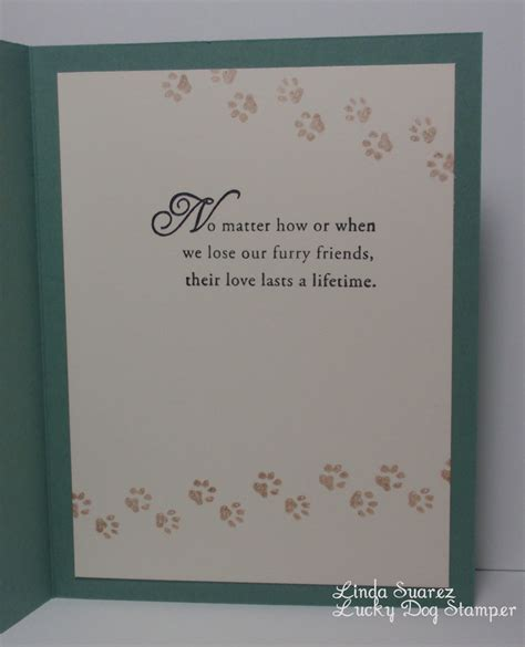 pet loss sympathy card template infant sympathy card templates