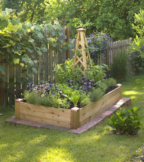 Creating Our First Vegetable Garden Advice Please Small Raised Vegetable Garden