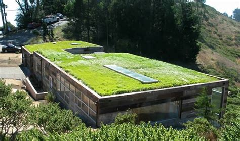 living roofs hardscaping 101 green roofs gardenista