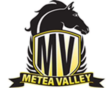 metea valley high school home