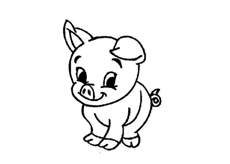 baby cartoon animals coloring pages baby pig cartoon clipart best