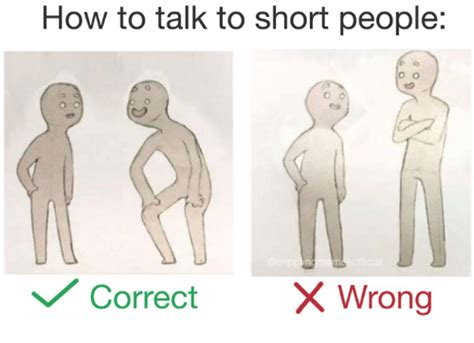 how to a to talk how to talk to in correct xwrong correct x wrong how to meme on sizzle