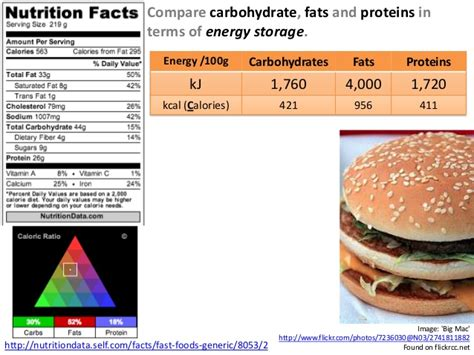 carbohydrates 100 grams 100 grams of carbs diet diyinter