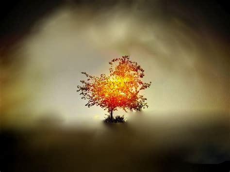 The Burning Bush burning bush pastoreid