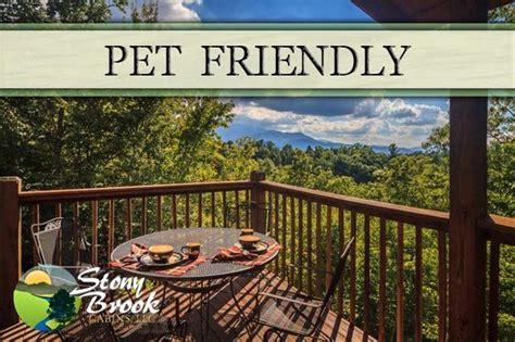 pet friendly cabins gatlinburg chalets cabin rentals