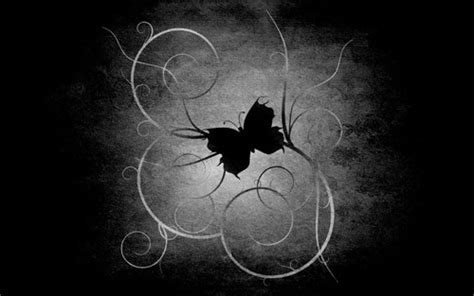 black and white butterfly wallpaper black butterfly wallpaper funny animal