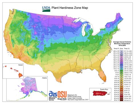 usda hardiness zone maps