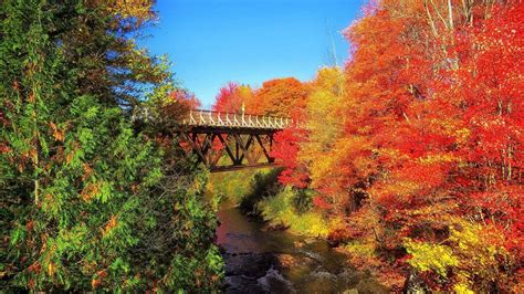 new england s spectacular fall foliage summer 2017 spectacular autumn foliage is forecast for new england