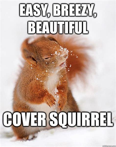 Funny Meme Cover Photos - easy breezy beautiful cover squirrel cover squirrel