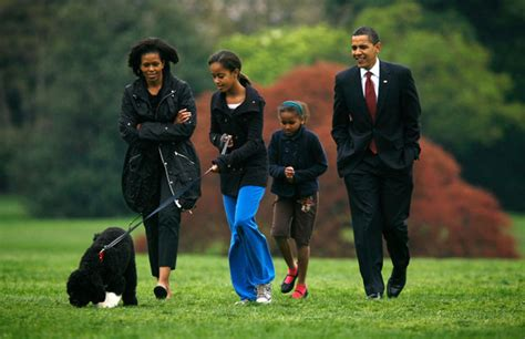 family dogs new obama family s new bo makes himself at home at white house us news the guardian
