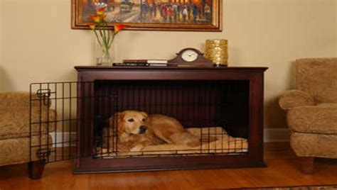 crate golden retriever puppy crate a puppy or not dogs in our photo