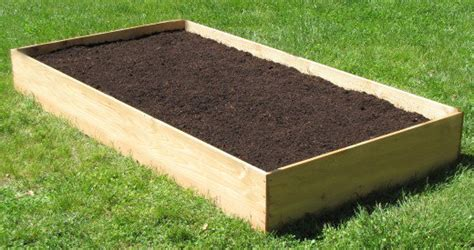 how to prepare soil for vegetable gardens the tiny