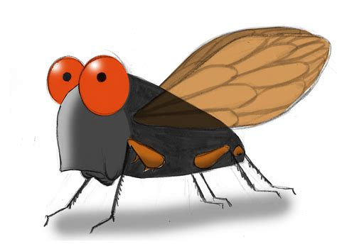 Home Design App Iphone Free the cicadas are coming ann telnaes