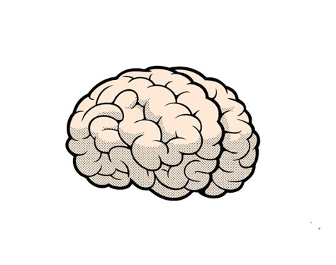 How To Draw A Brain In Illustrator