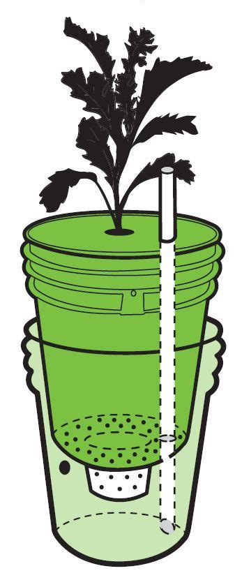 how do self watering planters work build a self watering container do it yourself