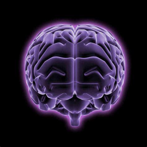 re brains brain use the chelsea scrolls