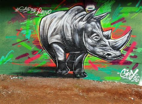 spray painter in durban giffy duminy save the rhino artist graffiti gifford