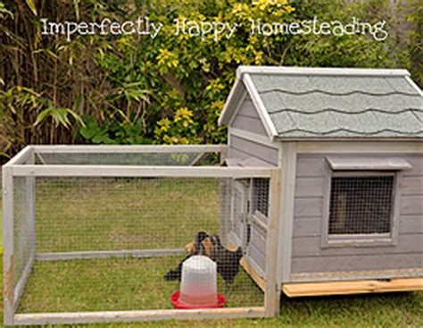 how to keep backyard chickens secret backyard chickens how to keep a stealth coop