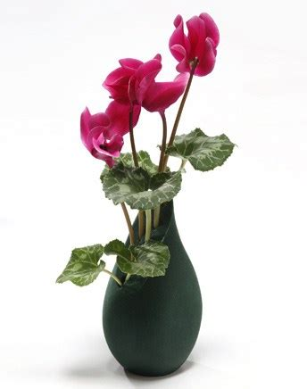 Time Life Chair 15 Beautiful Flower Vases