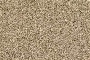 Rite Rug Charlotte Risque Mystic Mink Karastan Carpet Rite Rug