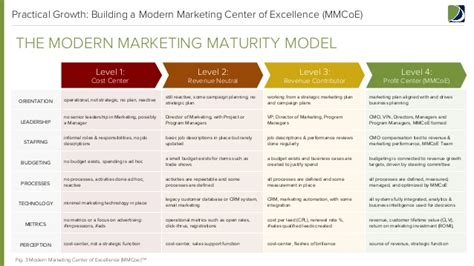 modern marketing center of excellence report