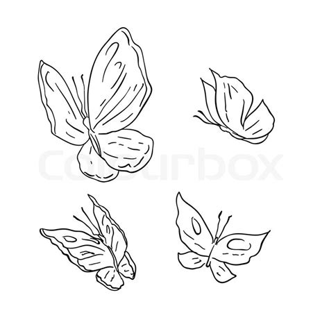 quot drawing abstract butterfly quot vector colourbox