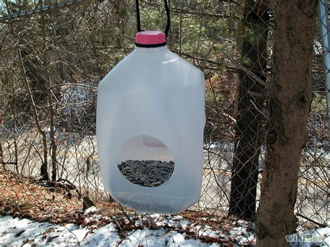 20 best homemade bird feeders that you can make bird cage