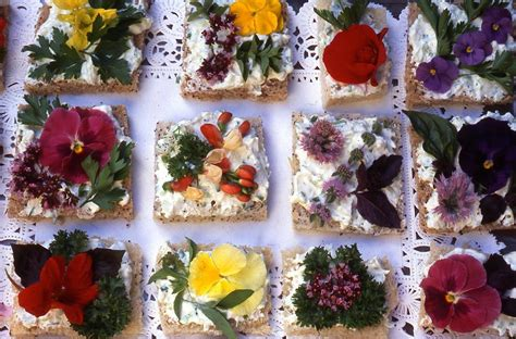 1000 images about edible flowers recipe ideas on two crones farm nursery county bounty petals both