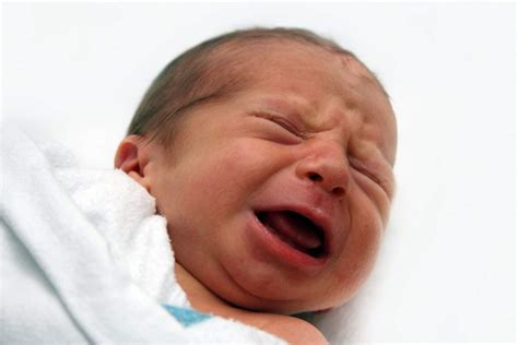 Dari New Modernism Kw Islam Liberal Prof Dr Abd Ala mengapa tidak boleh membiarkan bayi terlalu lama menangis