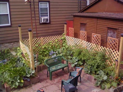 intensive vegetable garden in maspeth queens home harvest