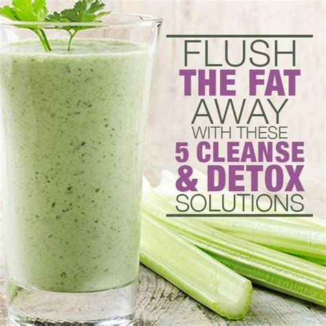Cilantro Detox Drink by 5 Flushing And Cleanse Solutions Celery Cilantro