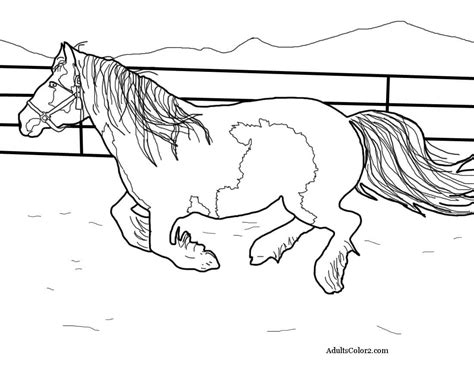 draft horse coloring pages for adults coloring pages