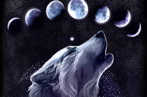 wallpaper cool wolf wolf computer wallpapers desktop backgrounds 3500x2304