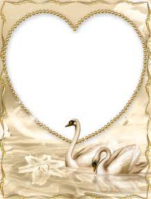 beautiful golden png frame with swan gallery