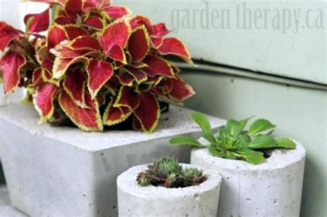 fazer plantas como fazer vasos de cimento para plantas passo a passo