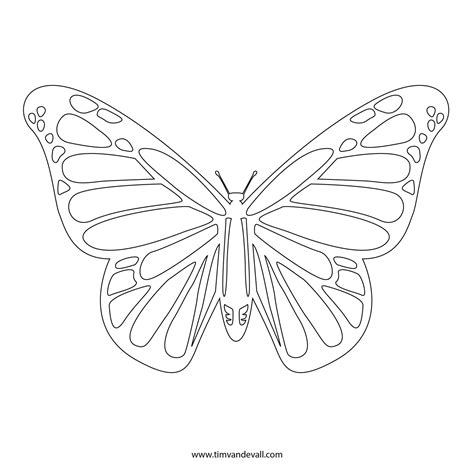 Butterfly Stencil Template free butterfly stencil monarch butterfly outline and