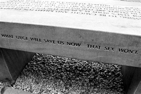 jenny holzer bench jenny holzer s benches on castle square warsaw purple