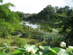 Singapore Botanic Garden Singapore Botanical Gardens A Visit Of Wondrous Nature